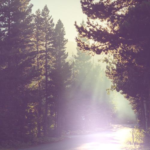 Sérénité du crépuscule | Esthétique Laroche
